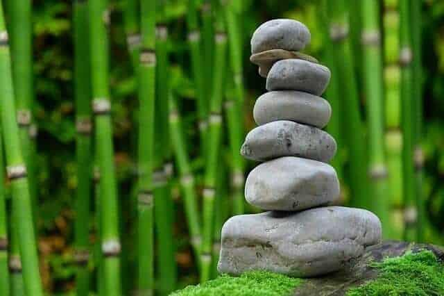 Medytacja kamieniami w tle zielona trzcina
